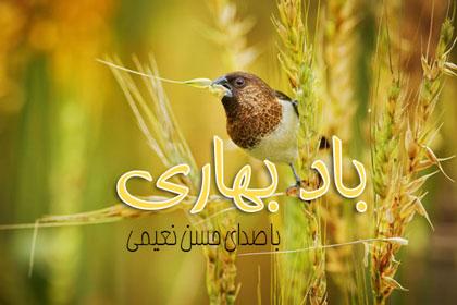 دانلود آهنگ زيباي حسن نعيمي باد بهاري